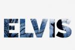 Elvis Communications
